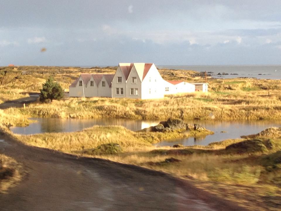 sunny house.jpg