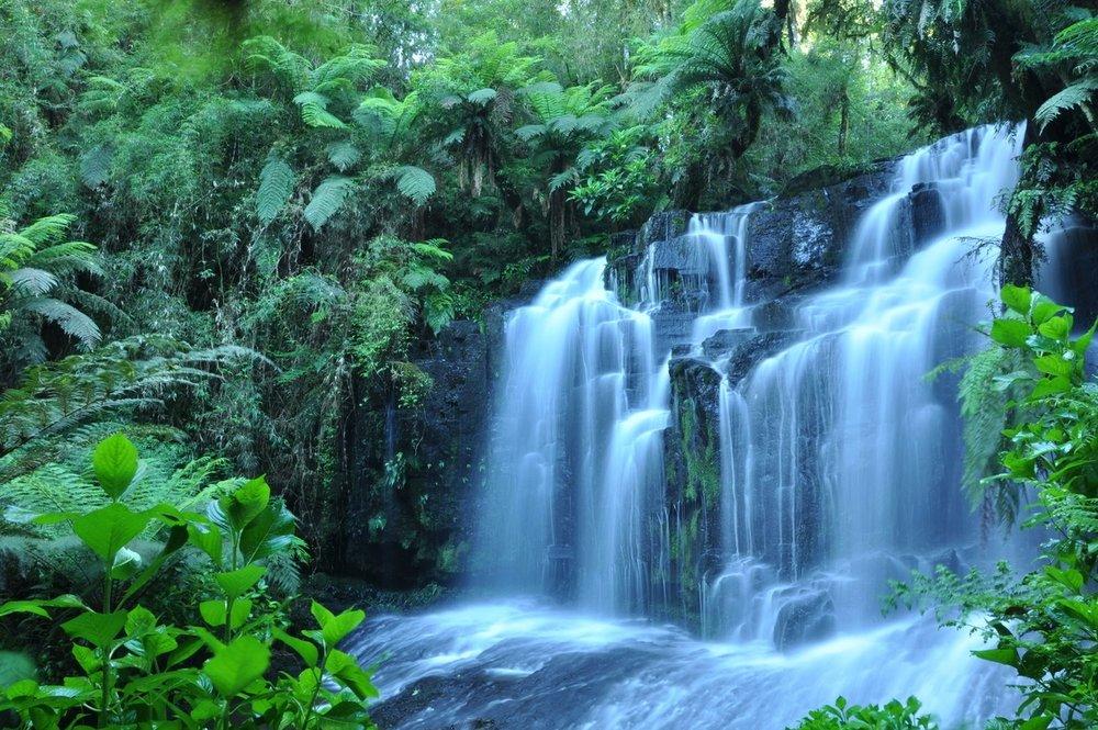 waterfall-1342886-1279x849.jpg