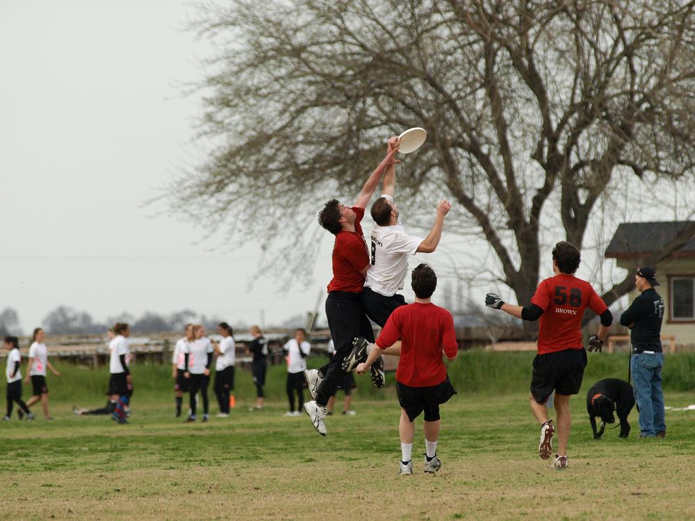 Ultimate frisbee Oregon