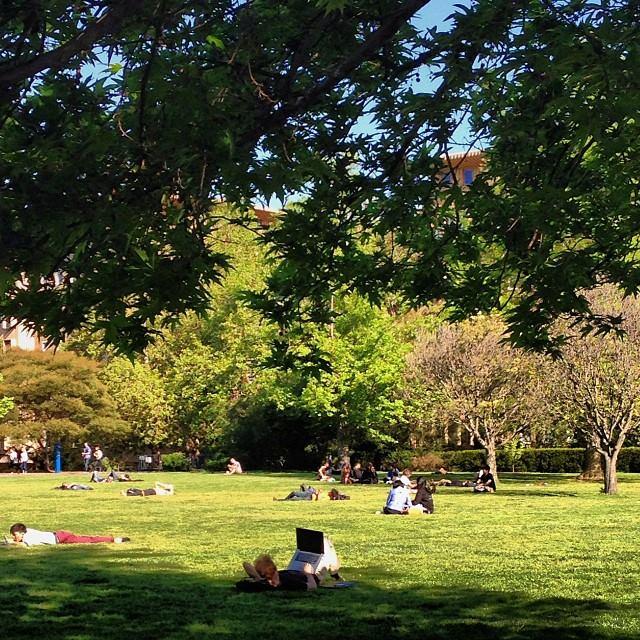 The University of Melbourne, Australia campus
