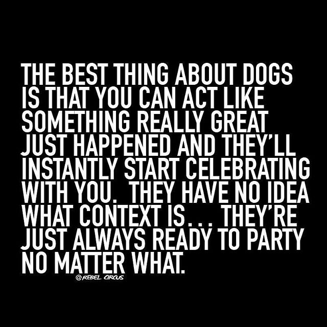 This. ❤️🐶🐾