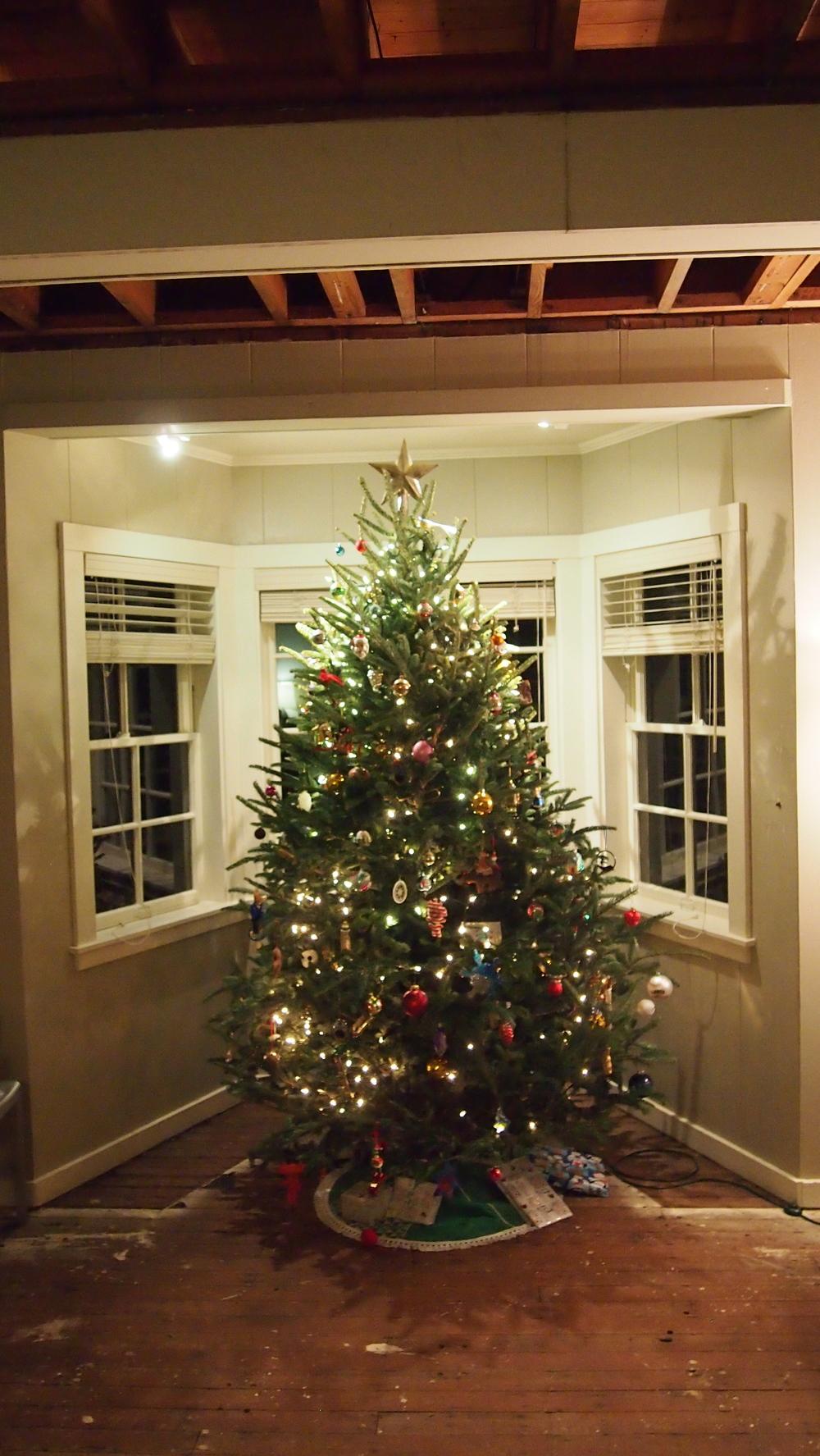 Tree#2.JPG