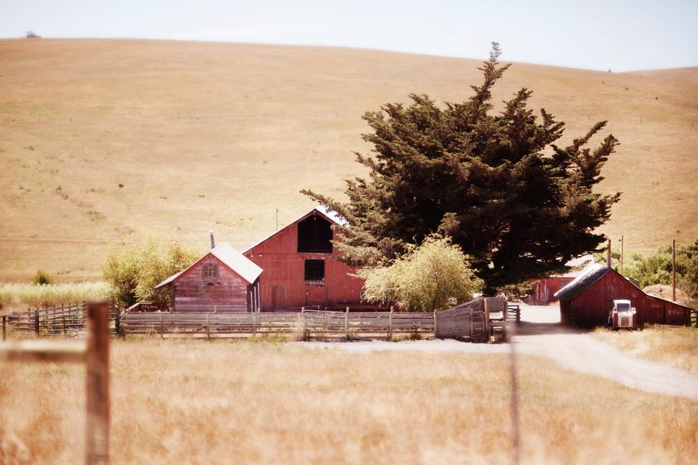 Stemple Creek Ranch.Photo:  Julie Mikos Houlihan