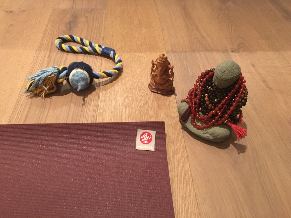 Buddha, Ganesh, and a chew toy: my new home practice normal. Ah, puppy parenthood!