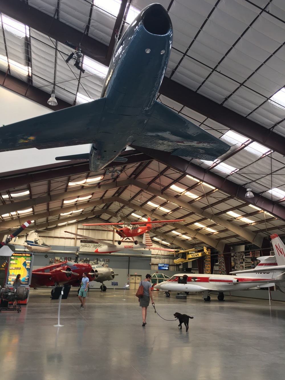Obi, enjoying his first  museum experience in Tucson's Pima Air and Space Museum.