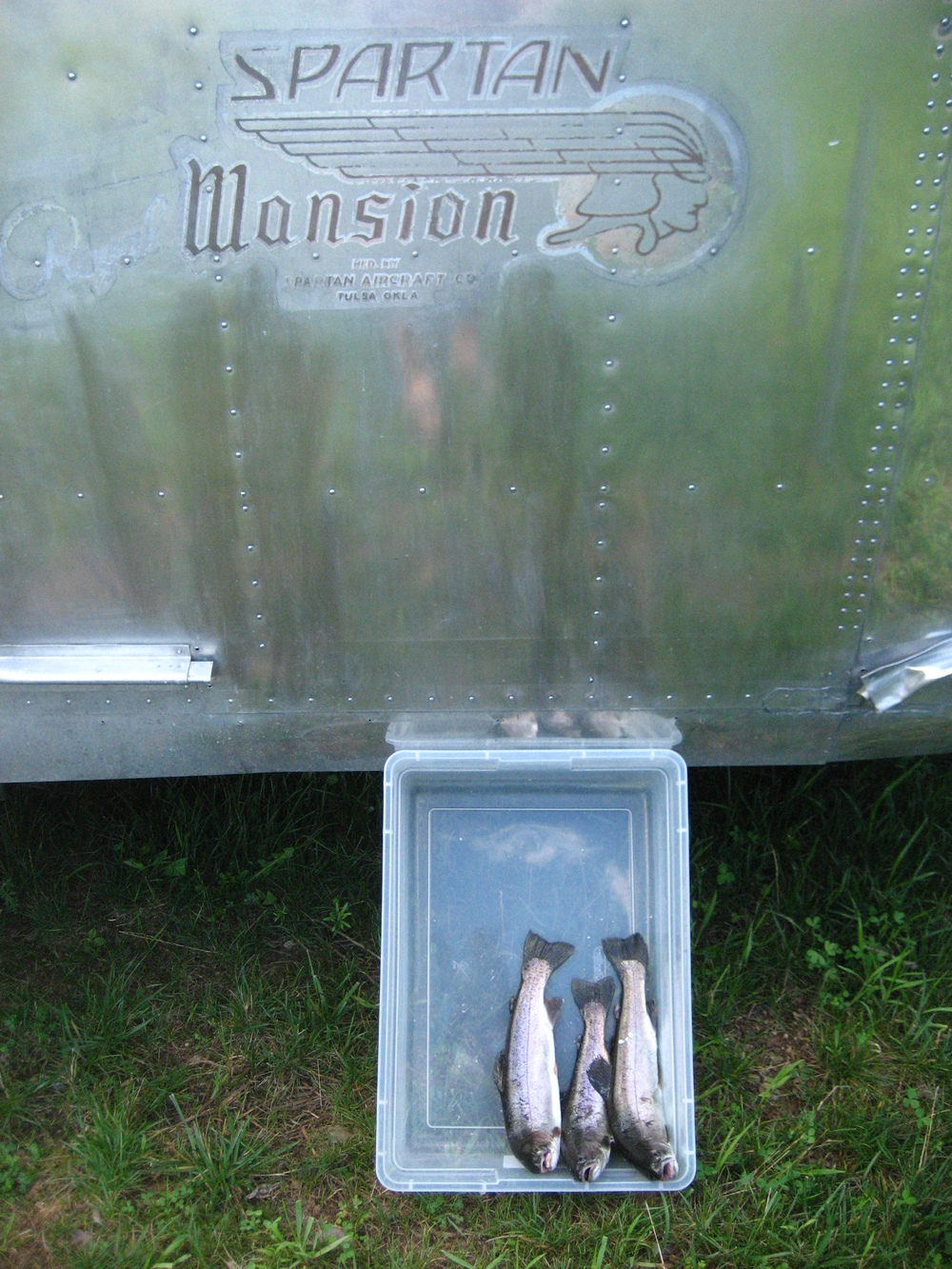 trailer with fresh trout_20080803_1770.JPG
