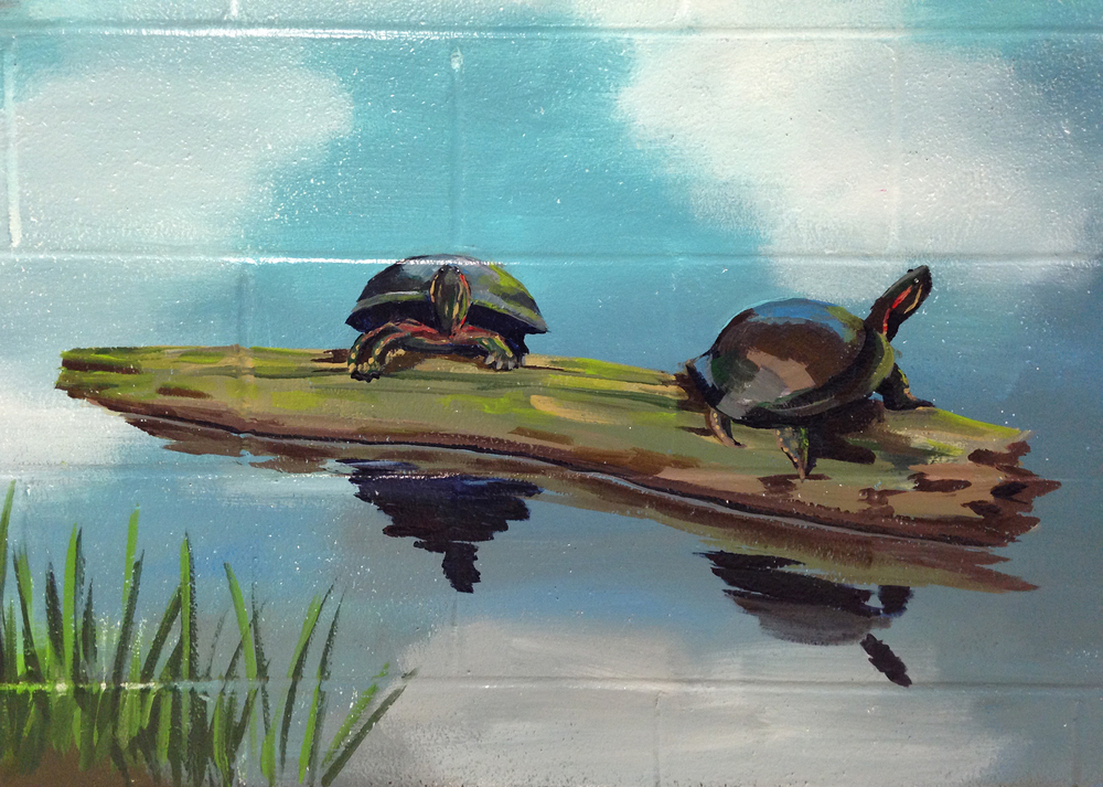 RiverOaks-marsh-turtles_TheColorChemists.jpg