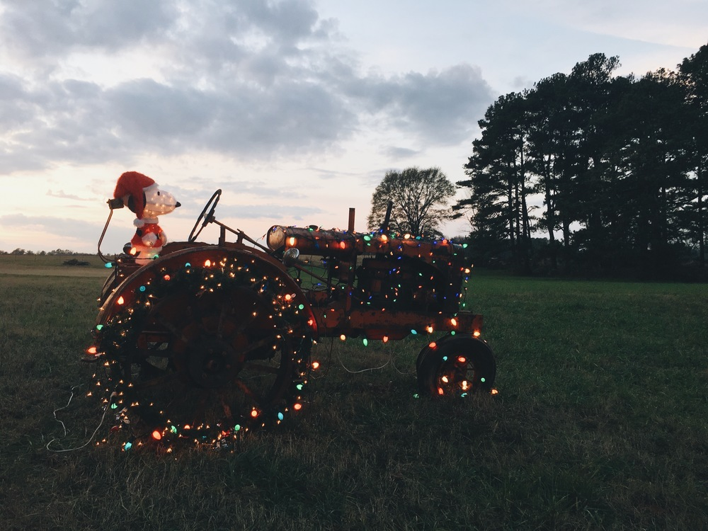 """Southern Christmas""  ft. Snoopy  Brooks, Georgia 