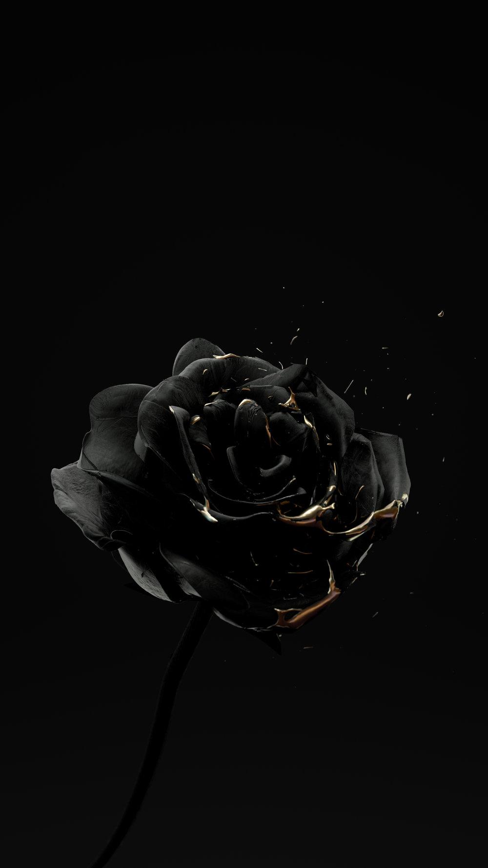 13_GoldRose_004_FULL.jpg