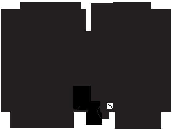 headshy_logo_swirls.png