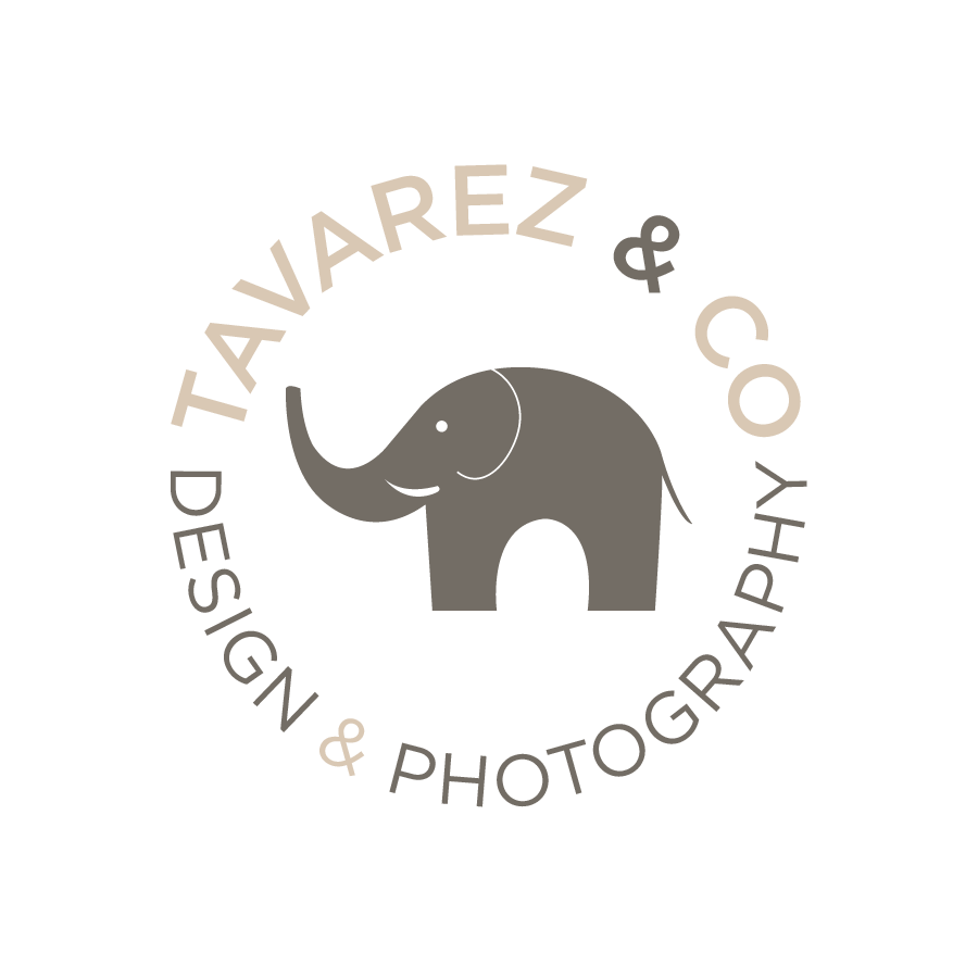 Tavarez & Co. Design & Photography