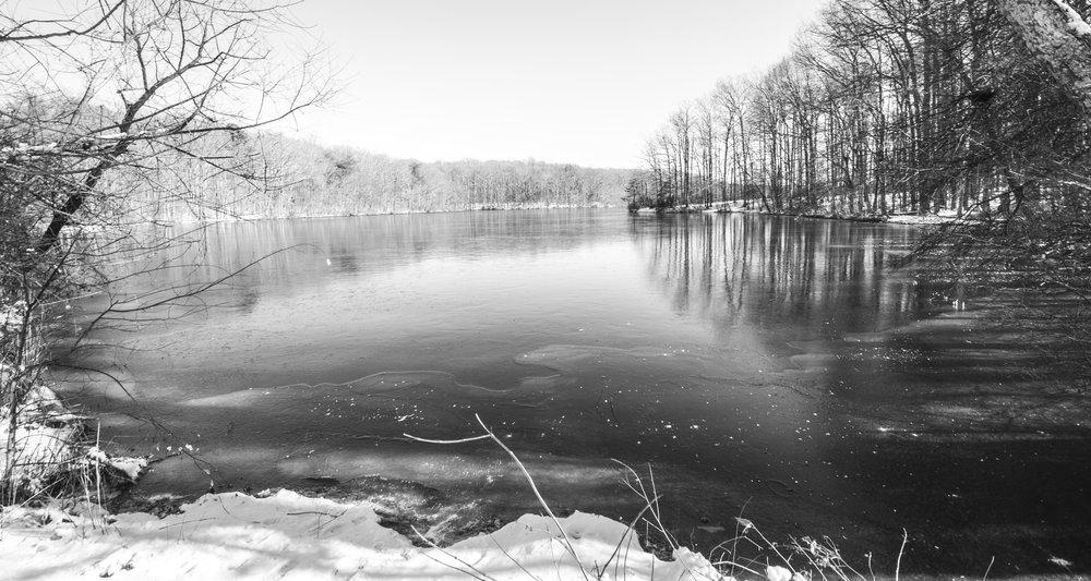 Burke Lake Pano 2.jpg