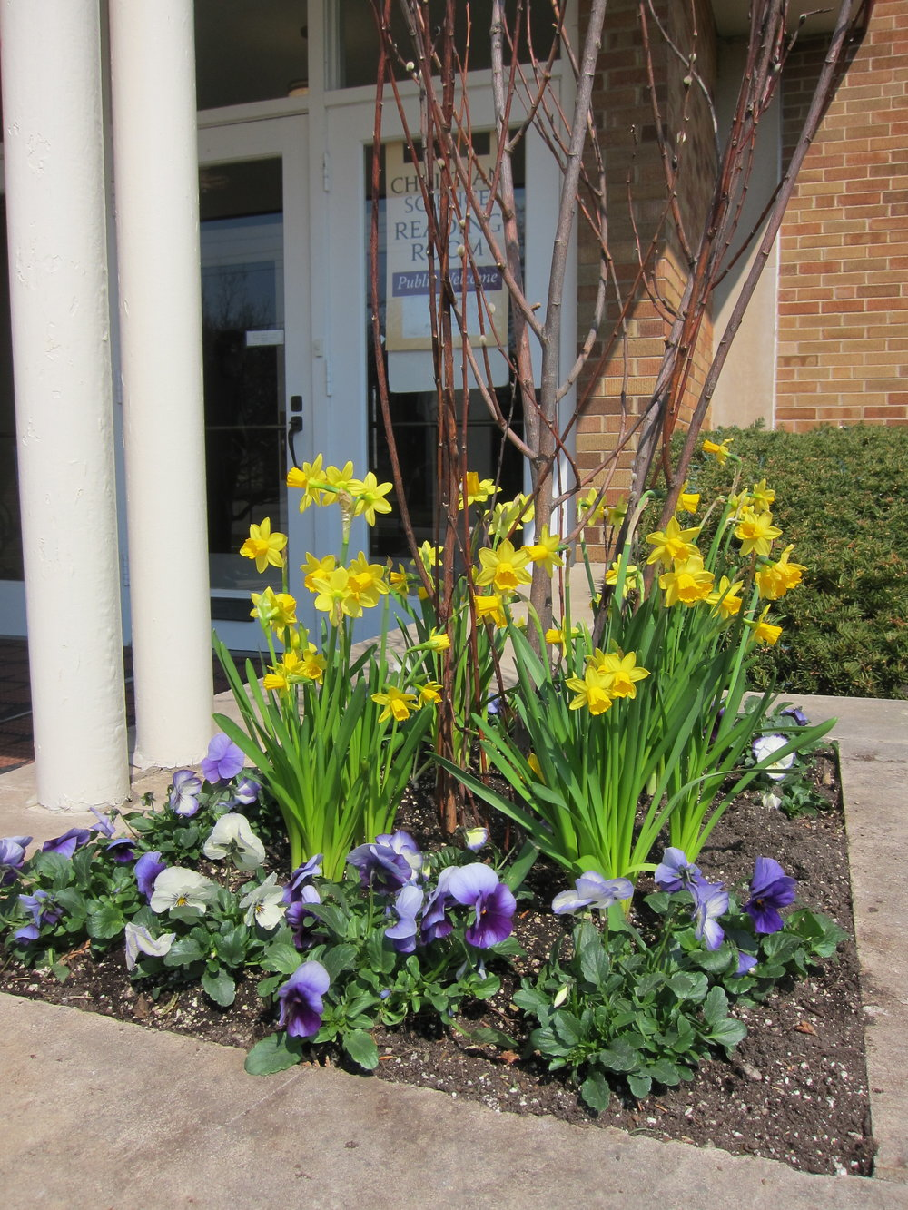 Spring Planter at Church