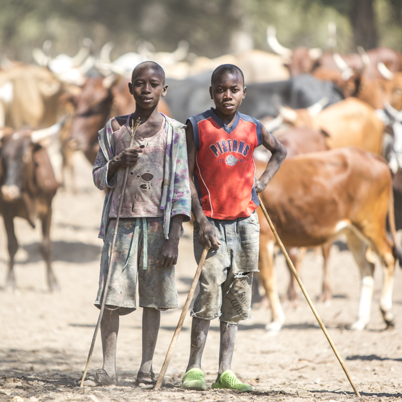 Young boys are taught to herd and protect the family's cattle from an early age.  The number of cattle a family has is a sign of their wealth.  Cahama, Cunene Provence   ©24Atlantic