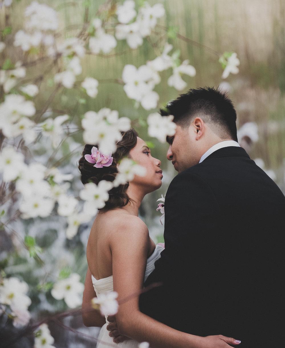 wedding-photographers-dallas-2017.jpg