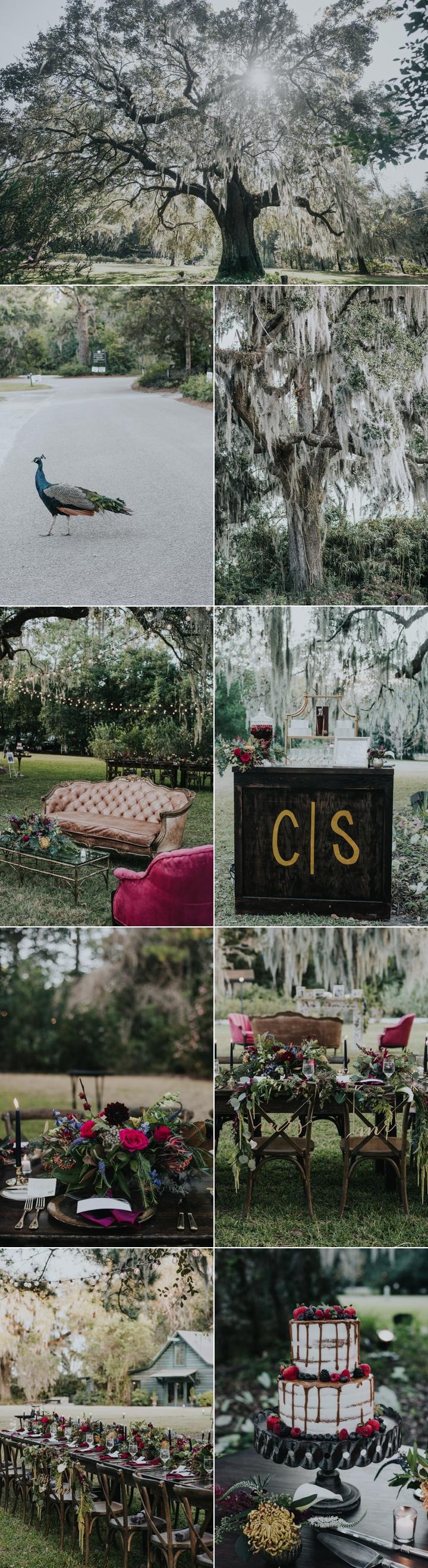 magnolia plantation weddings charleston sc 20.jpg