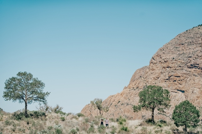 Big Bend Wedding Photographers