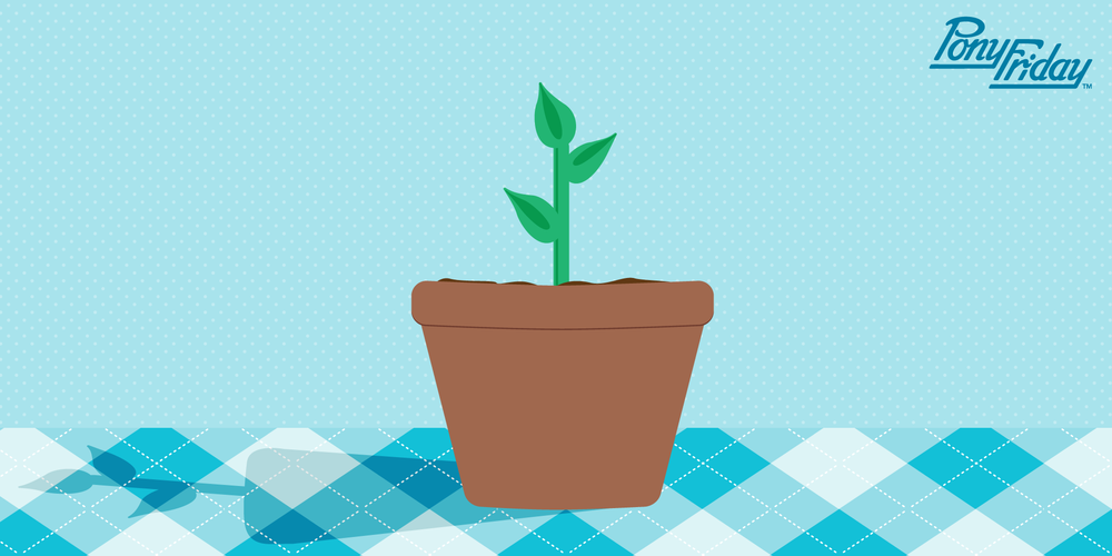 Pony-Friday-Content-Marketing-Growth-Sprout-Plant-Grow-Blog-Header.png