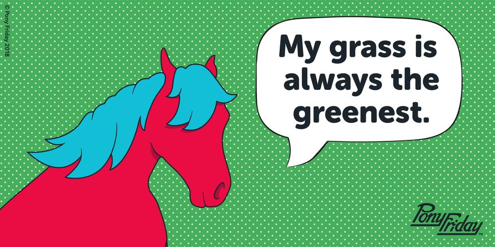 Pony-Friday-Greenest-Grass-Kicks-Blog-Post-Header-Image.png