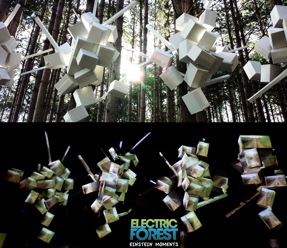 Electric Forest Thought Cloud a.jpg
