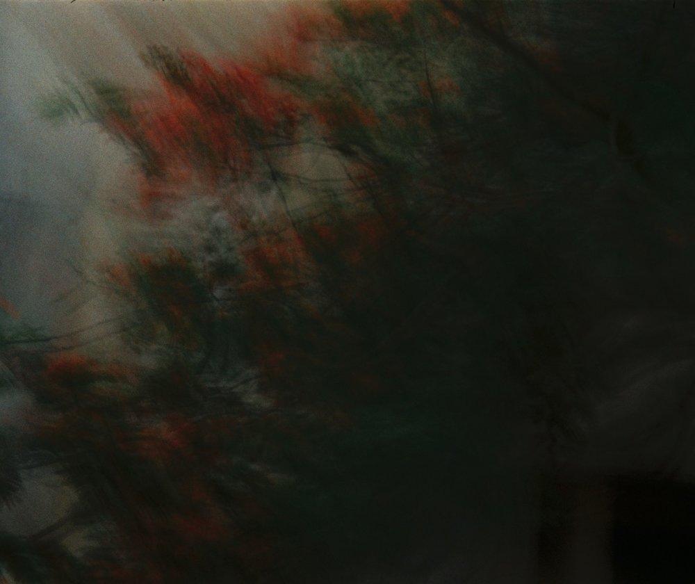 Screen Shot 2019-01-15 at 4.21.13 AM.jpg