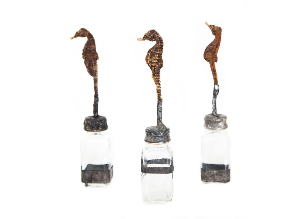 SNGLSEAHORSE/BOT-LIMITED sugg. retail $198.00