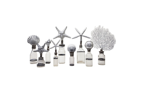SILVER SHELL BOTTLE SHELL COLLECTION sugg. retail $88.00 to $198.00