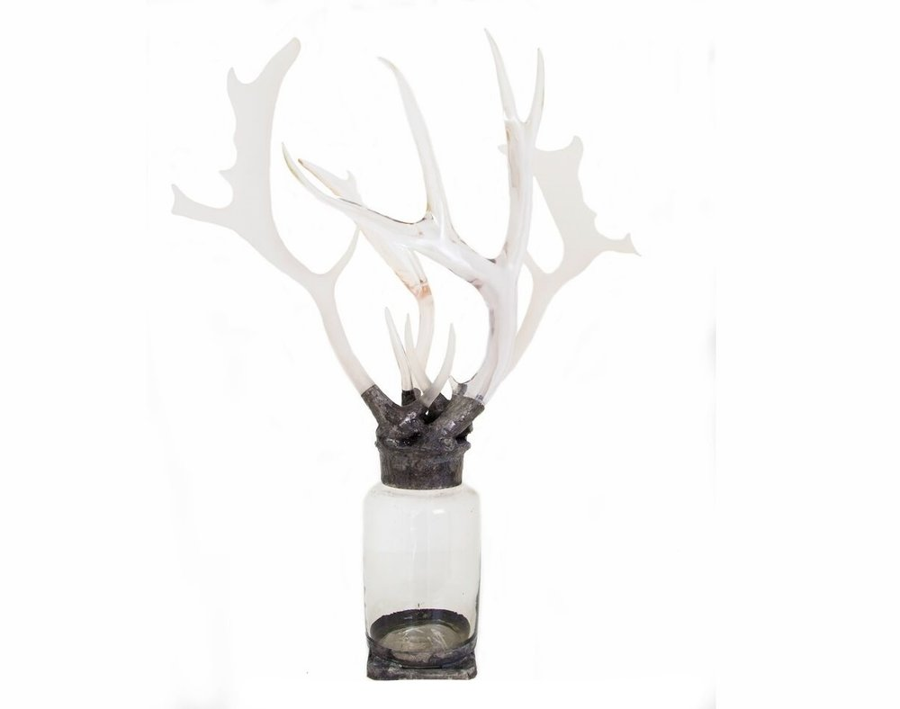 NEW Vintage Antler Bottle.jpg