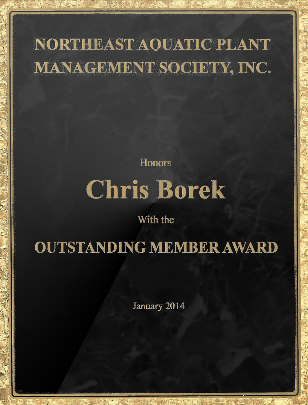 Neapms_Outstanding_Member_Award_2014.png