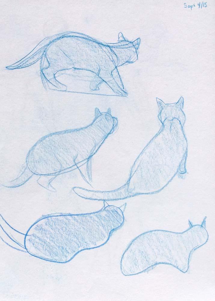 Cat Sketching1.jpg