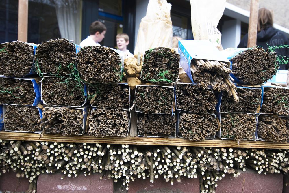 Een laag riet/melkpakken waar solitaire bijtjes zich kunnen nestelen