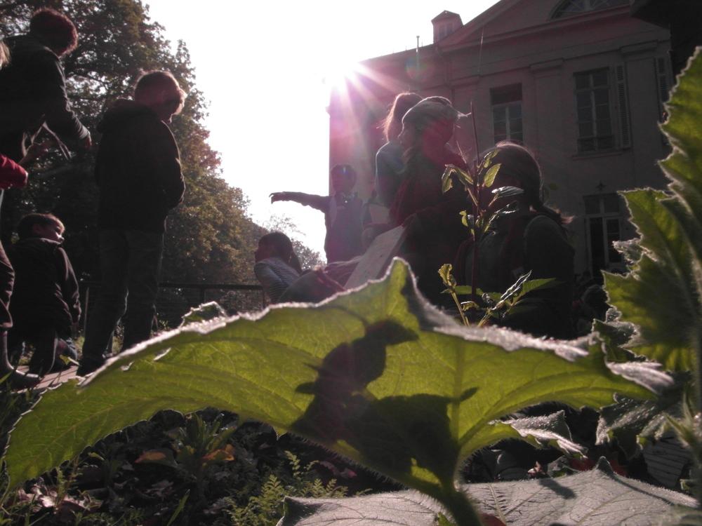 Toen ik in de tuin kwam en een vierkant met kolen en bloemen zag groeien waar omheen een tribune gebouwd was waarop mensen kunnen zitten om de groenten te bekijken(Sigrid zei; bij groenten kunnen zich ook 'drama's afspelen!) was ik verkocht, hier komt de mobiele volkstuin in goede handen.