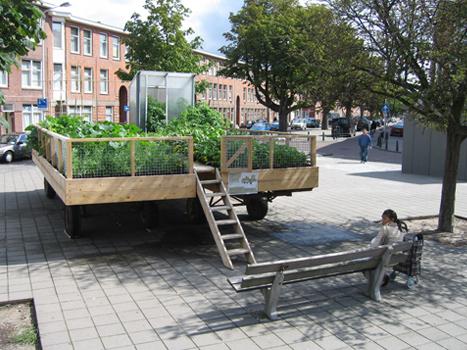 Een nieuwe functie voor de volkstuin moet worden weggelegd; namelijk als openbaar toegankelijk groengebied binnen de nieuwe ruimtelijke ordening. Naarmate de dynamiek van steden toeneemt en steden drukker, voller en lawaaieriger worden lijkt er meer behoefte te zijn aan oases voor rust, stilte en contemplatie.
