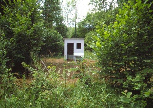 Een moestuin midden in het bos.