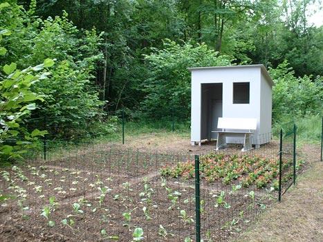 De vier groentebedden zijn omsloten door een hek.