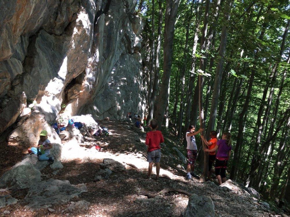 Poletni plezalni tabor za otroke