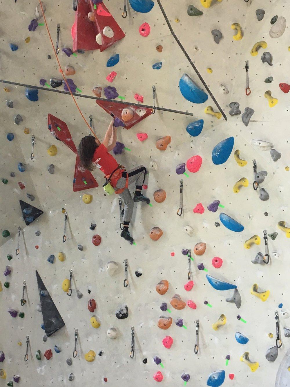 Tekmovanje v športnem plezanju za osnovne šole_Grif_11.jpg