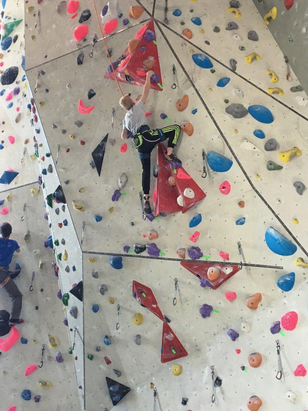 Tekmovanje v športnem plezanju za osnovne šole_Grif_18.jpg