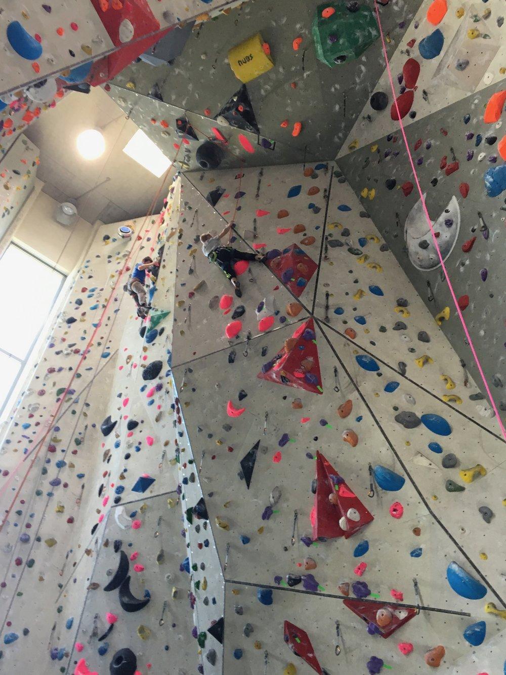 Tekmovanje v športnem plezanju za osnovne šole_Grif_19.jpg