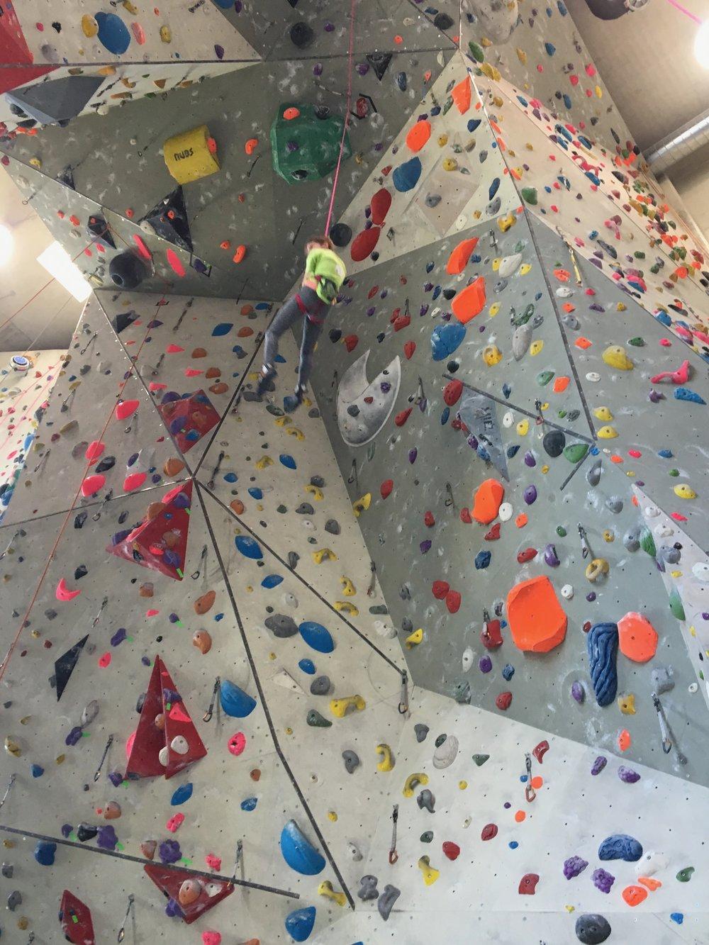 Tekmovanje v športnem plezanju za osnovne šole_Grif_23.jpg