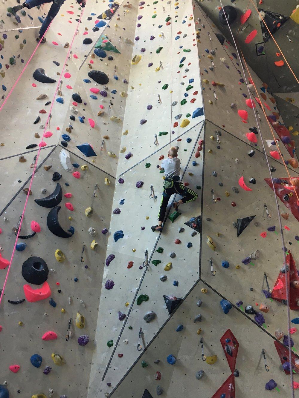 Tekmovanje v športnem plezanju za osnovne šole_Grif_27.jpg