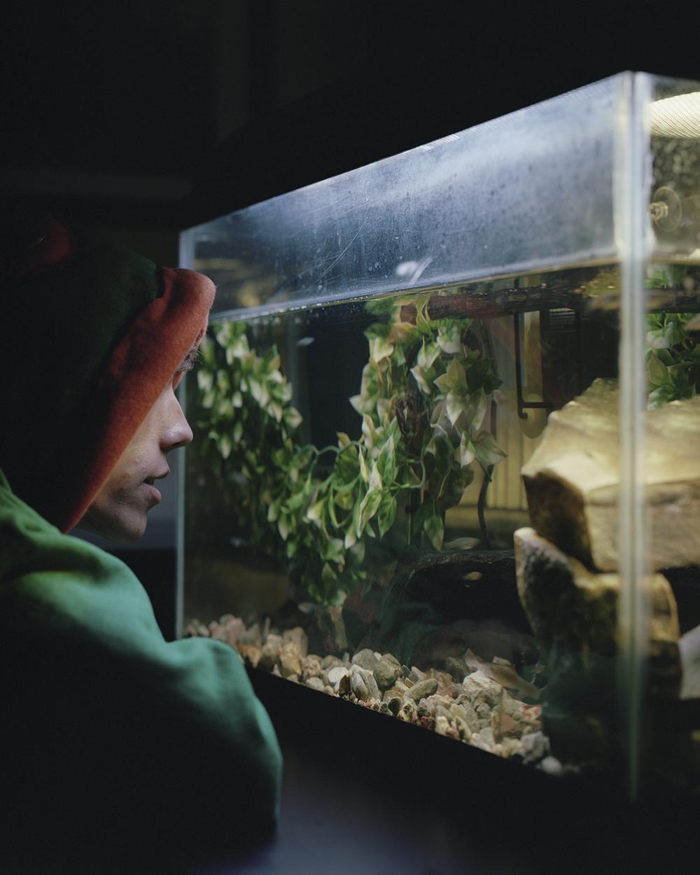 jake aquarium.jpg