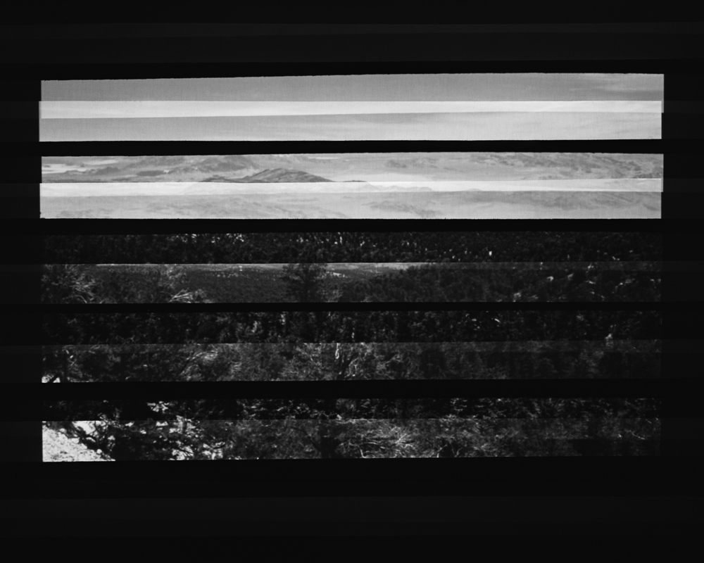 Barred Landscape Double Exposure.jpg
