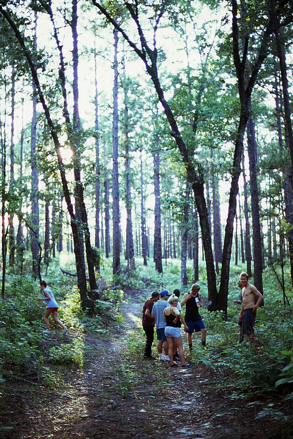 Group on the trail.jpg