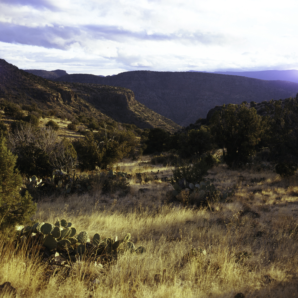 Cocnino Valley from Campsite.jpg