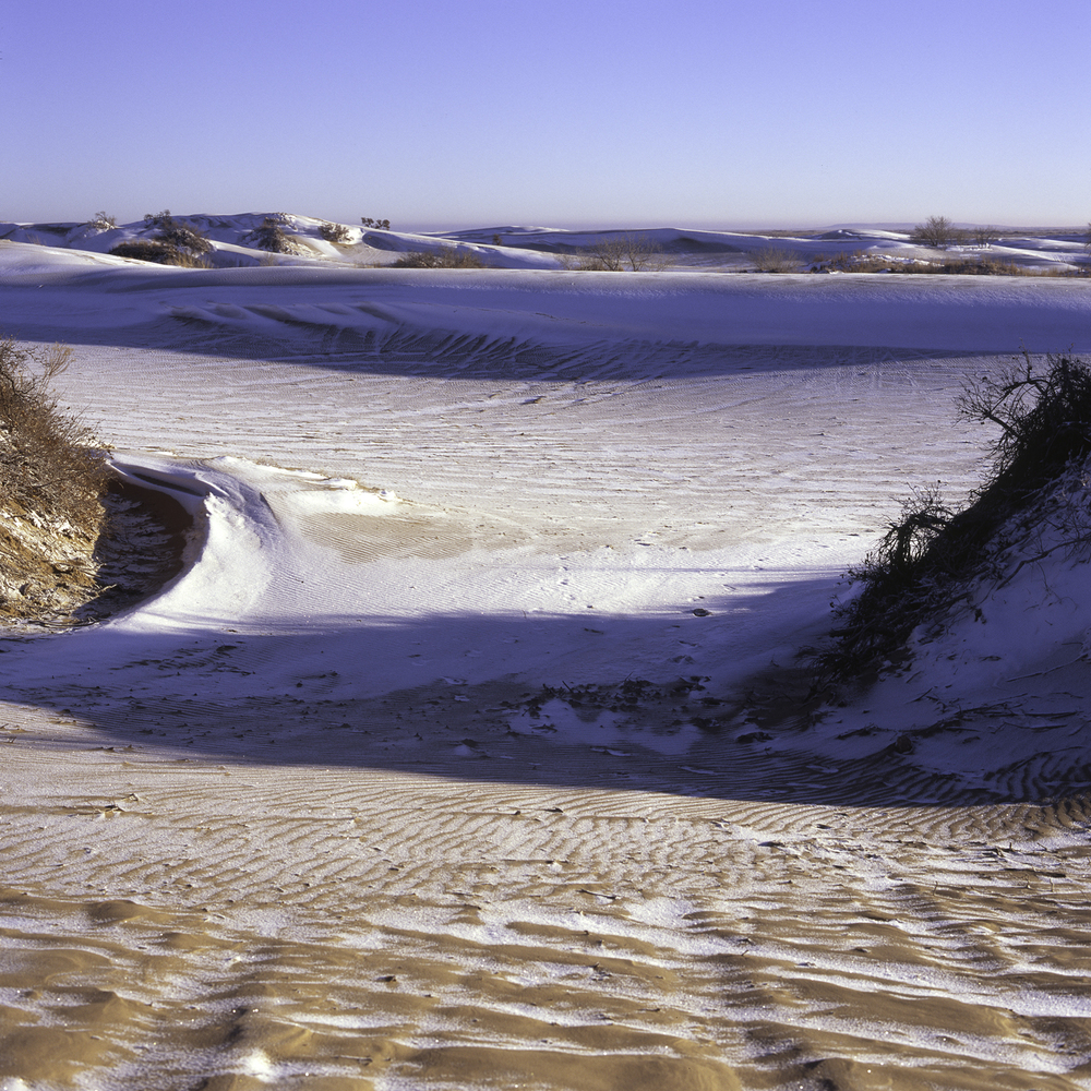 Mescalero Dune Scape.jpg