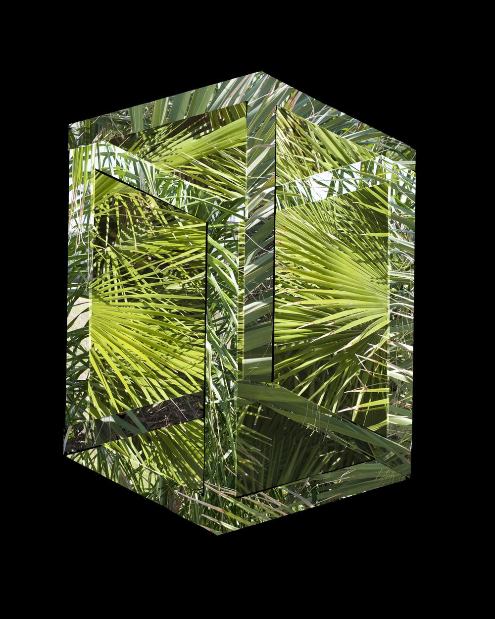 Pnrose Cube Final.jpg