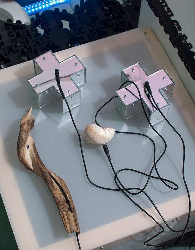 Resistive Optical Controllers , 2013 Mirror-finish x-shaped boxes Seashell Carved driftwood wand