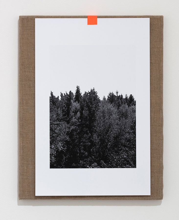 Forest   Reforest , 2018 linen, archival pigment print, tape 17.75 x 14.125 inches (45 x 36 cm)