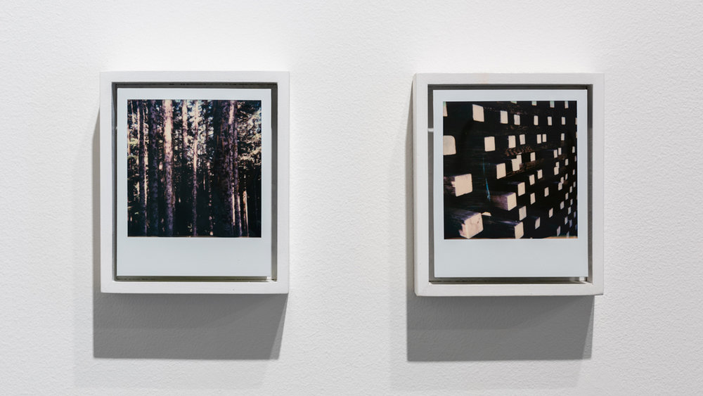 Land   Reland , 2018 Polaroids, wood, paint (diptych) 11.75 x 5.125 x 1.625 inches (30 x 13 x 4 cm)